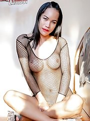 Busty ladyboy Titi is on fishnets and with no panties. No panties means, it's gonna be an effortless ass and cock play.
